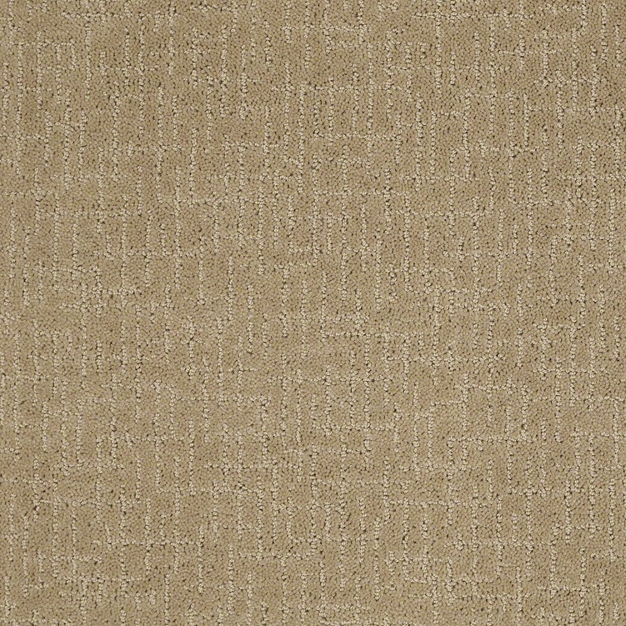 STAINMASTER Active Family Undeniable 12-ft W x Cut-to-Length Marzipan Berber/Loop Interior Carpet