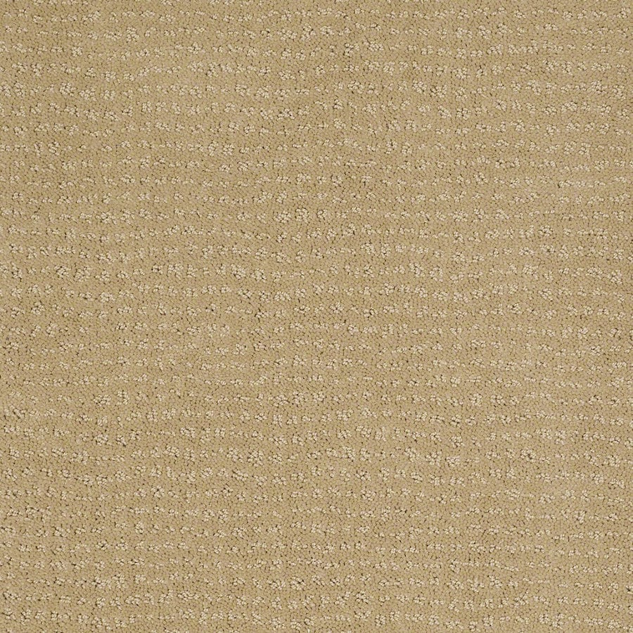 STAINMASTER Active Family Undisputed Golden Fleece Berber/Loop Interior Carpet