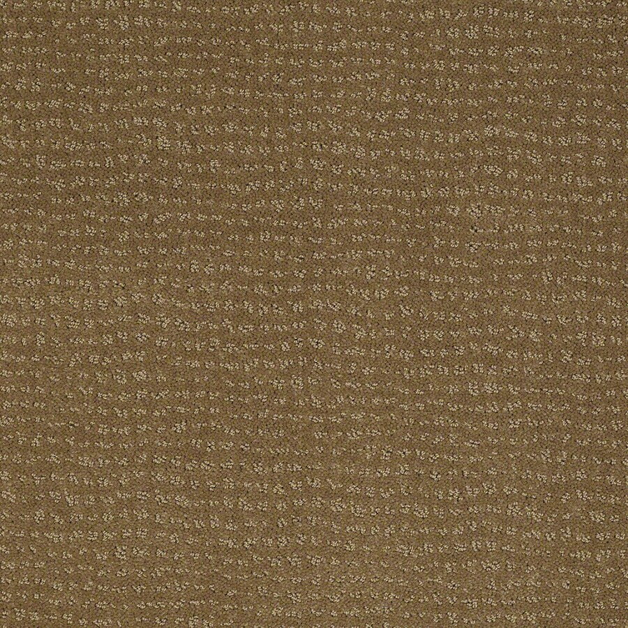 STAINMASTER Active Family Undisputed 12-ft W x Cut-to-Length Medal Bronze Berber/Loop Interior Carpet