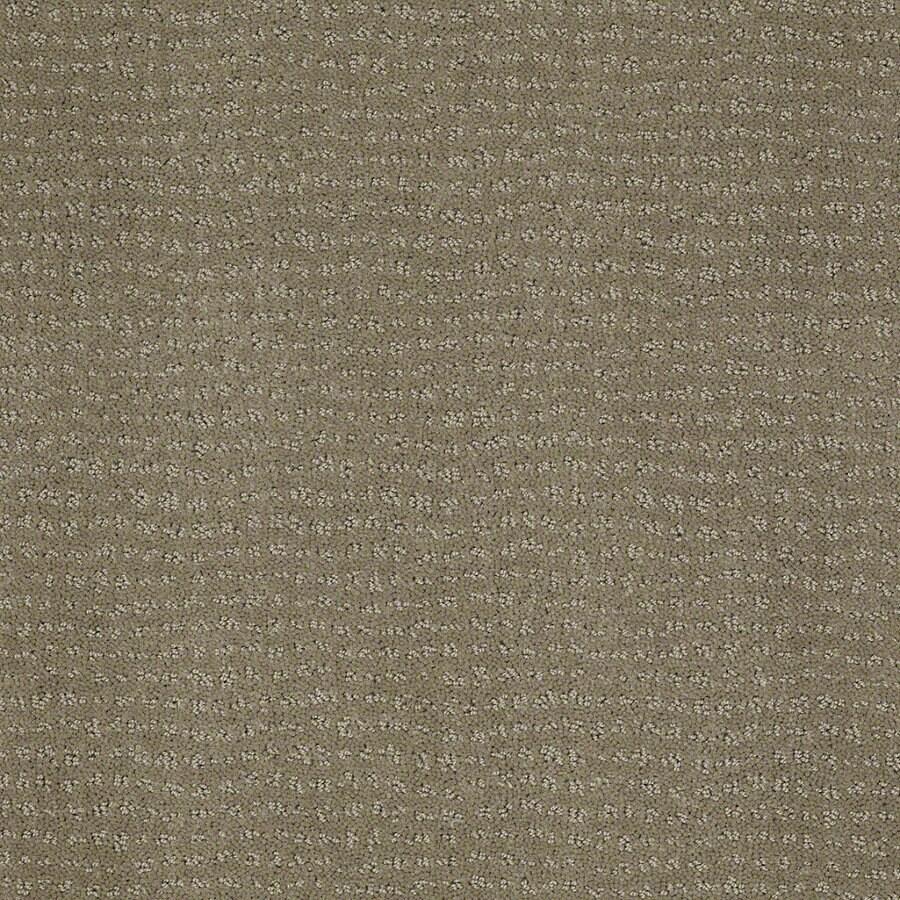 STAINMASTER Active Family Undisputed Greige Berber/Loop Interior Carpet