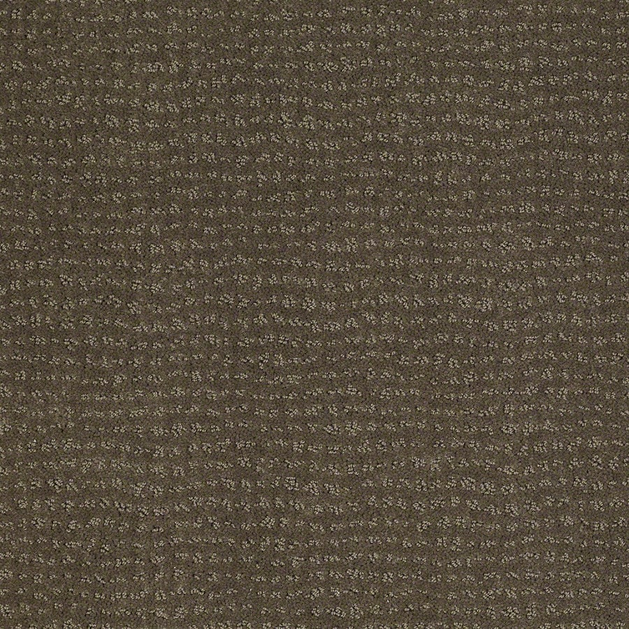 STAINMASTER Active Family Undisputed Oregon Trail Berber/Loop Interior Carpet