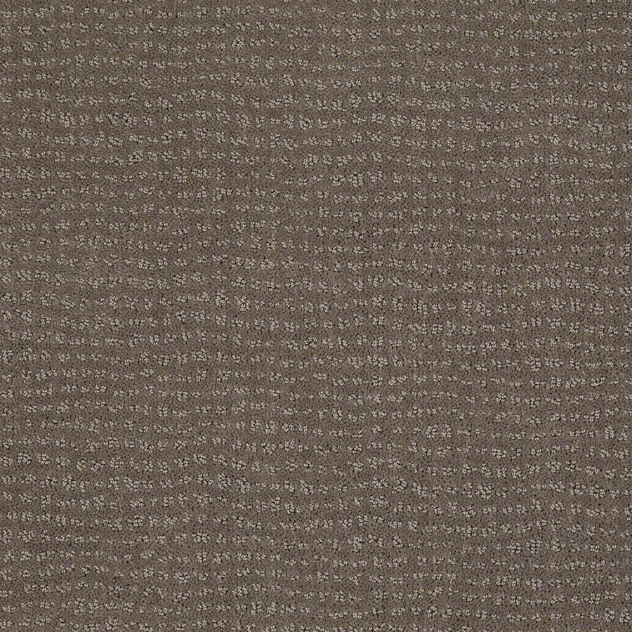 STAINMASTER Active Family Undisputed Glacial Rock Berber/Loop Interior Carpet
