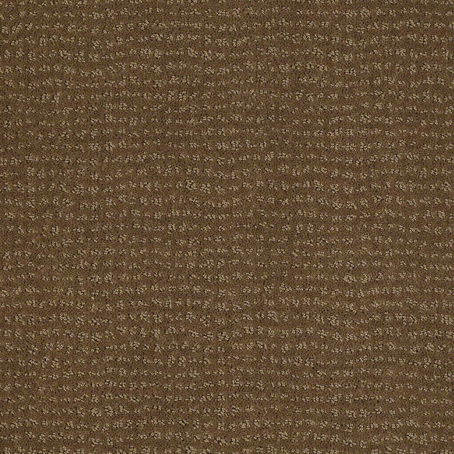 STAINMASTER Active Family Undisputed 12-ft W Toasted Coconut Berber/Loop Interior Carpet