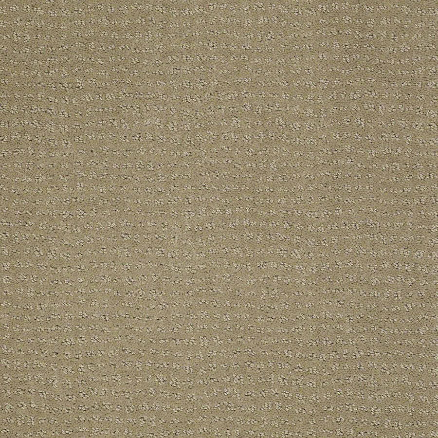 STAINMASTER Active Family Undisputed Fennel Berber/Loop Interior Carpet