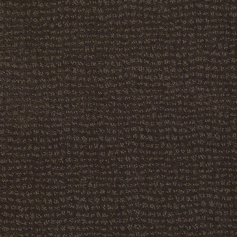 STAINMASTER Active Family Undisputed 12-ft W Dark Earth Berber/Loop Interior Carpet