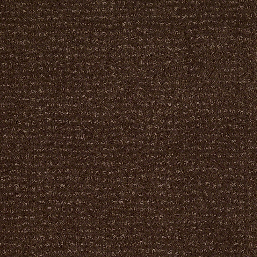 STAINMASTER Active Family Undisputed 12-ft W x Cut-to-Length Nutmeg Berber/Loop Interior Carpet