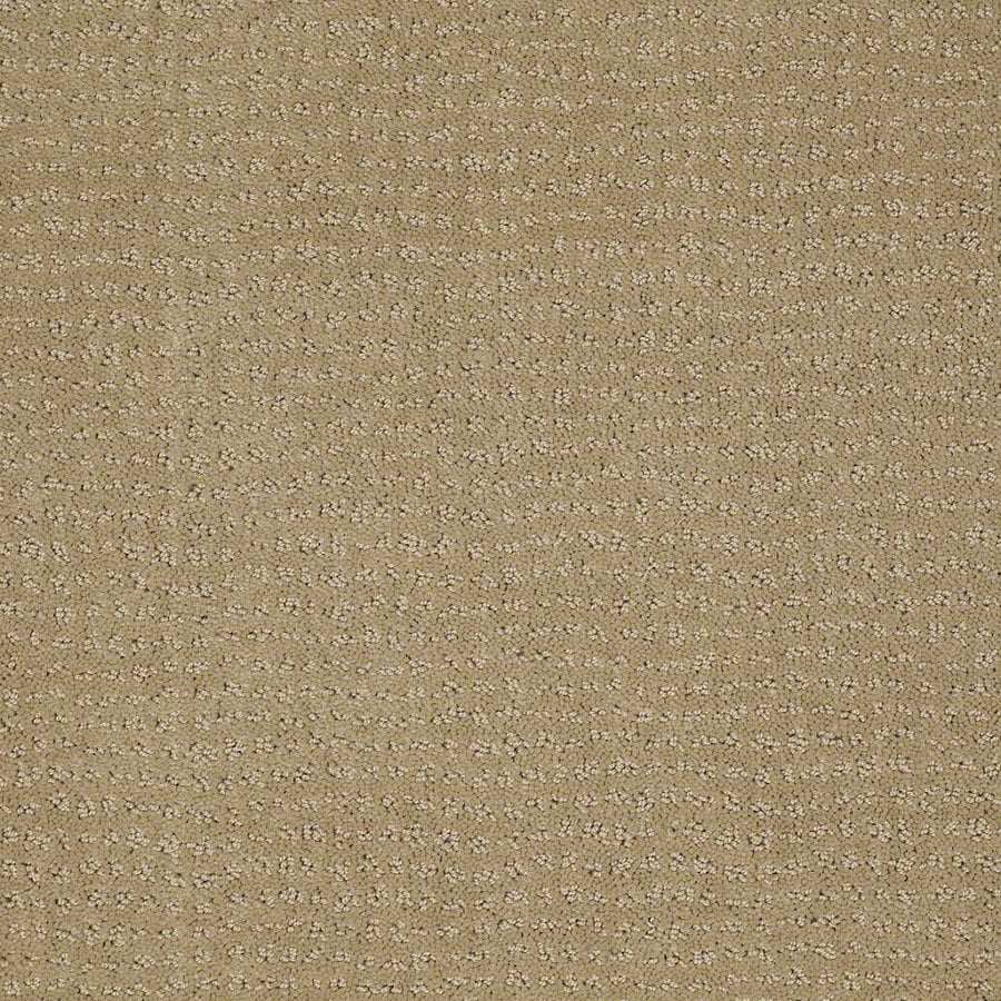 STAINMASTER Active Family Undisputed Marzipan Berber Indoor Carpet