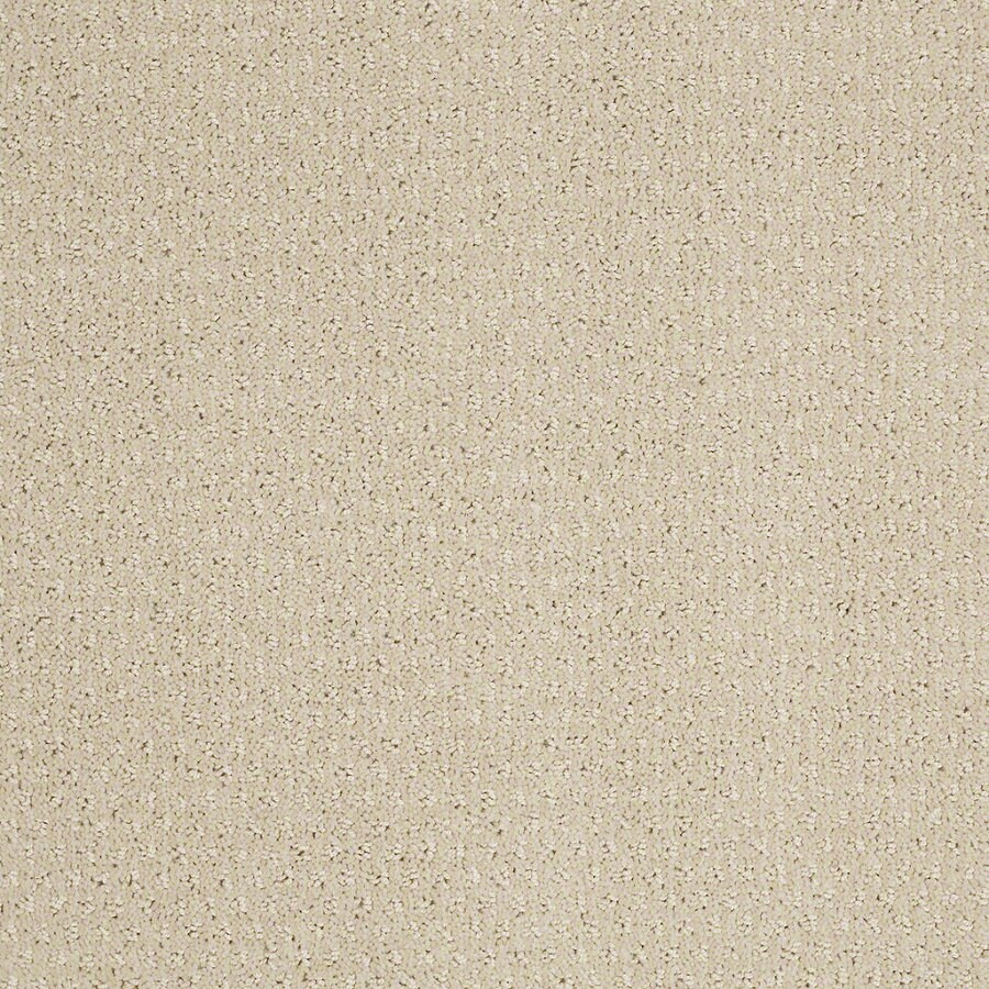 STAINMASTER Active Family St Thomas Macadamia Berber Indoor Carpet