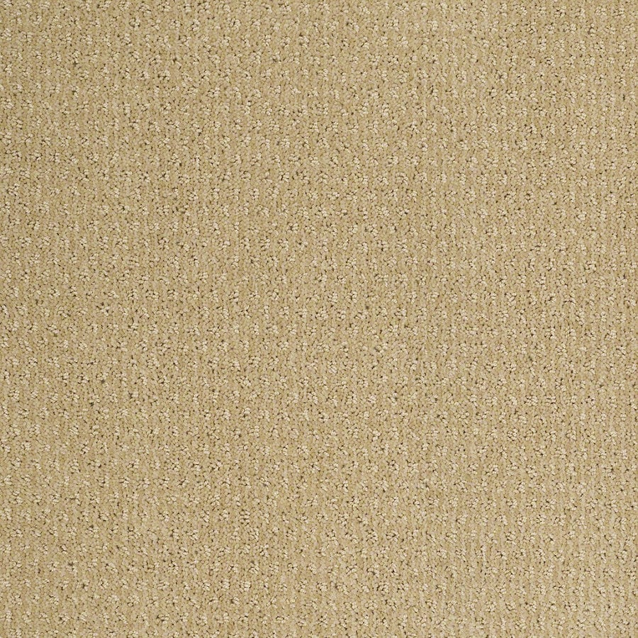 STAINMASTER Active Family St Thomas 12-ft W x Cut-to-Length Chamomile Berber/Loop Interior Carpet