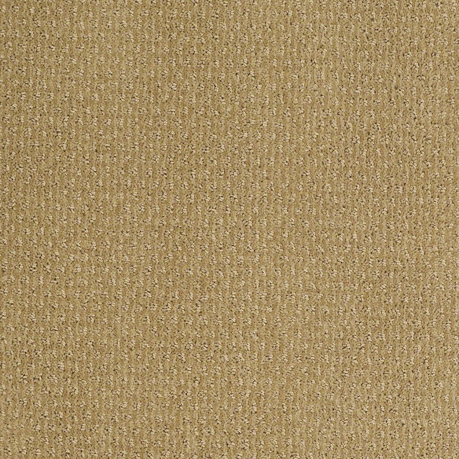 STAINMASTER Active Family St Thomas 12-ft W Summer Melon Berber/Loop Interior Carpet