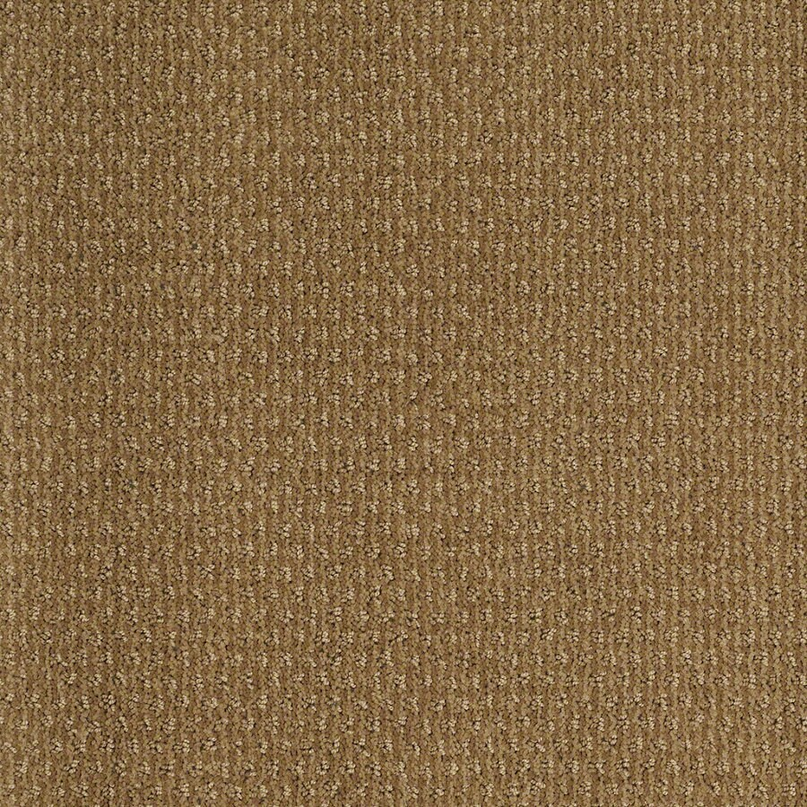 STAINMASTER Active Family St Thomas Starfish Berber Indoor Carpet