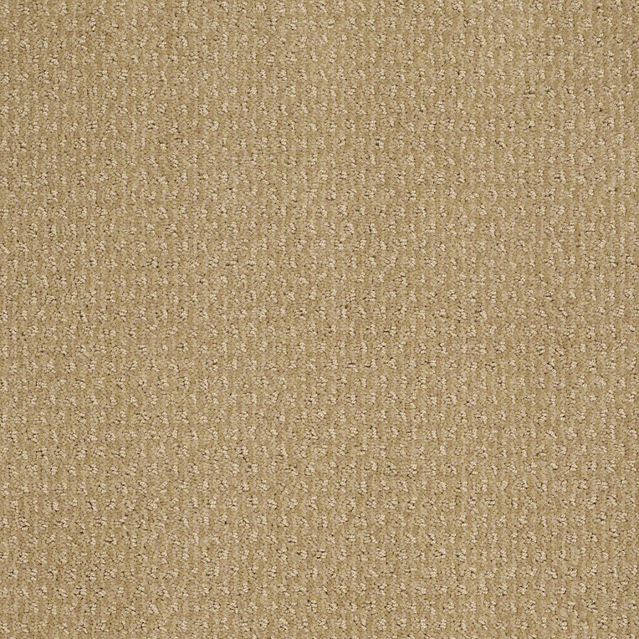 STAINMASTER Active Family St Thomas 12-ft W x Cut-to-Length Golden Fleece Berber/Loop Interior Carpet