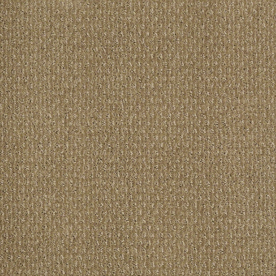 STAINMASTER Active Family St Thomas 12-ft W x Cut-to-Length Sahara Sun Berber/Loop Interior Carpet