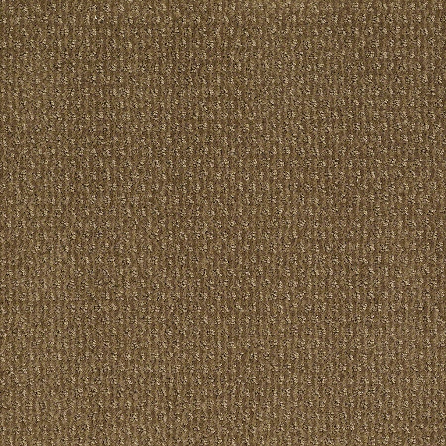 STAINMASTER Active Family St Thomas Medal Bronze Berber Indoor Carpet