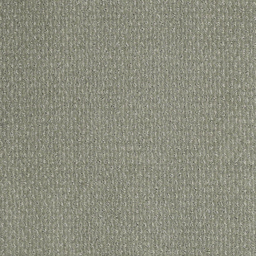 STAINMASTER Active Family St Thomas Fog Green Berber/Loop Interior Carpet
