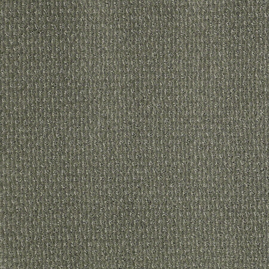 STAINMASTER Active Family St Thomas Agave Green Berber/Loop Interior Carpet