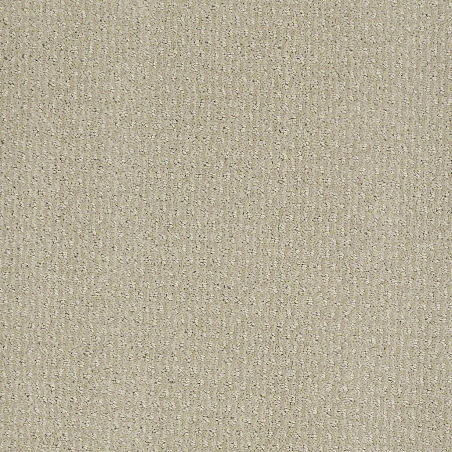 STAINMASTER Active Family St Thomas Oyster Berber Indoor Carpet