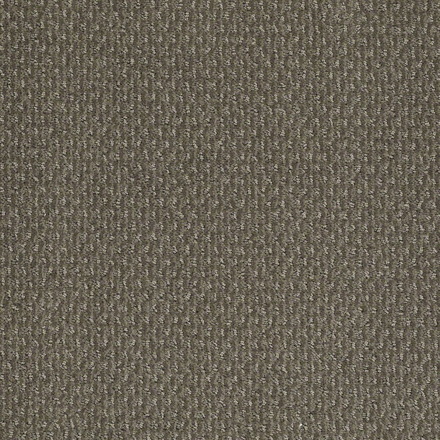 STAINMASTER Active Family St Thomas Tradewinds Berber/Loop Interior Carpet