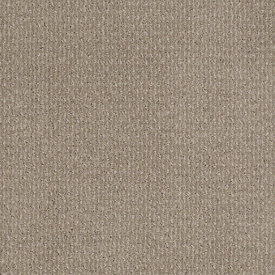 STAINMASTER Active Family St Thomas Cubist Gray Berber/Loop Interior Carpet