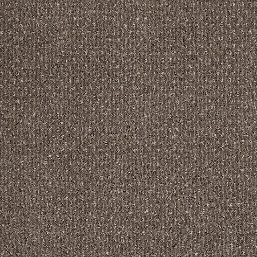 STAINMASTER Active Family St Thomas 12-ft W x Cut-to-Length Glacial Rock Berber/Loop Interior Carpet