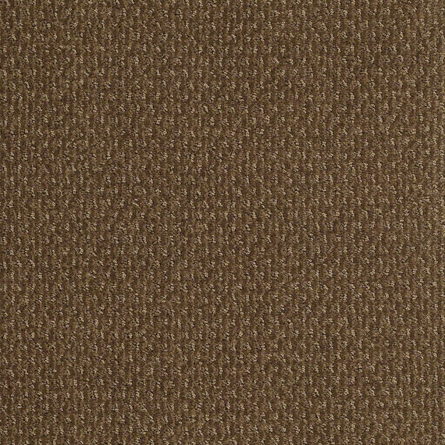 STAINMASTER Active Family St Thomas Toasted Coconut Berber/Loop Interior Carpet