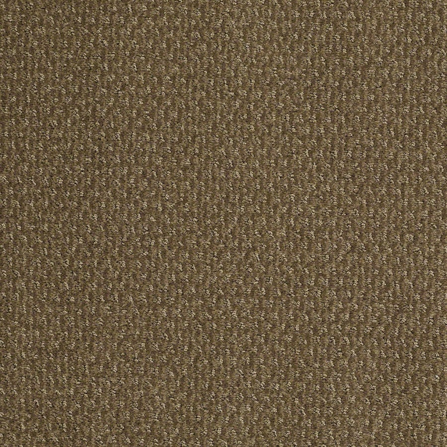 STAINMASTER Active Family St Thomas 12-ft W x Cut-to-Length Safari Vest Berber/Loop Interior Carpet