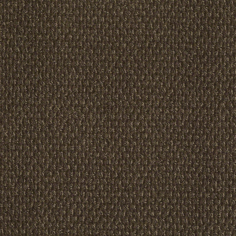 STAINMASTER Active Family St Thomas Shitake Berber/Loop Interior Carpet