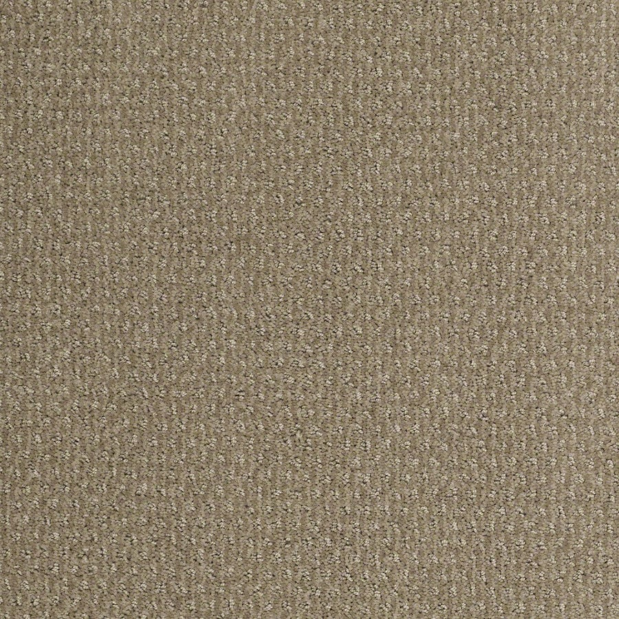 STAINMASTER Active Family St Thomas Hazy Berber/Loop Interior Carpet
