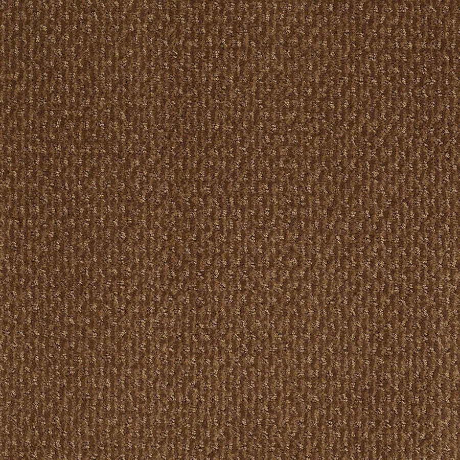 STAINMASTER Active Family St Thomas 12-ft W x Cut-to-Length Roman Brick Berber/Loop Interior Carpet