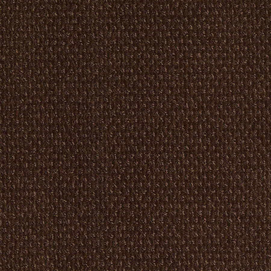 STAINMASTER Active Family St Thomas Nutmeg Berber/Loop Interior Carpet