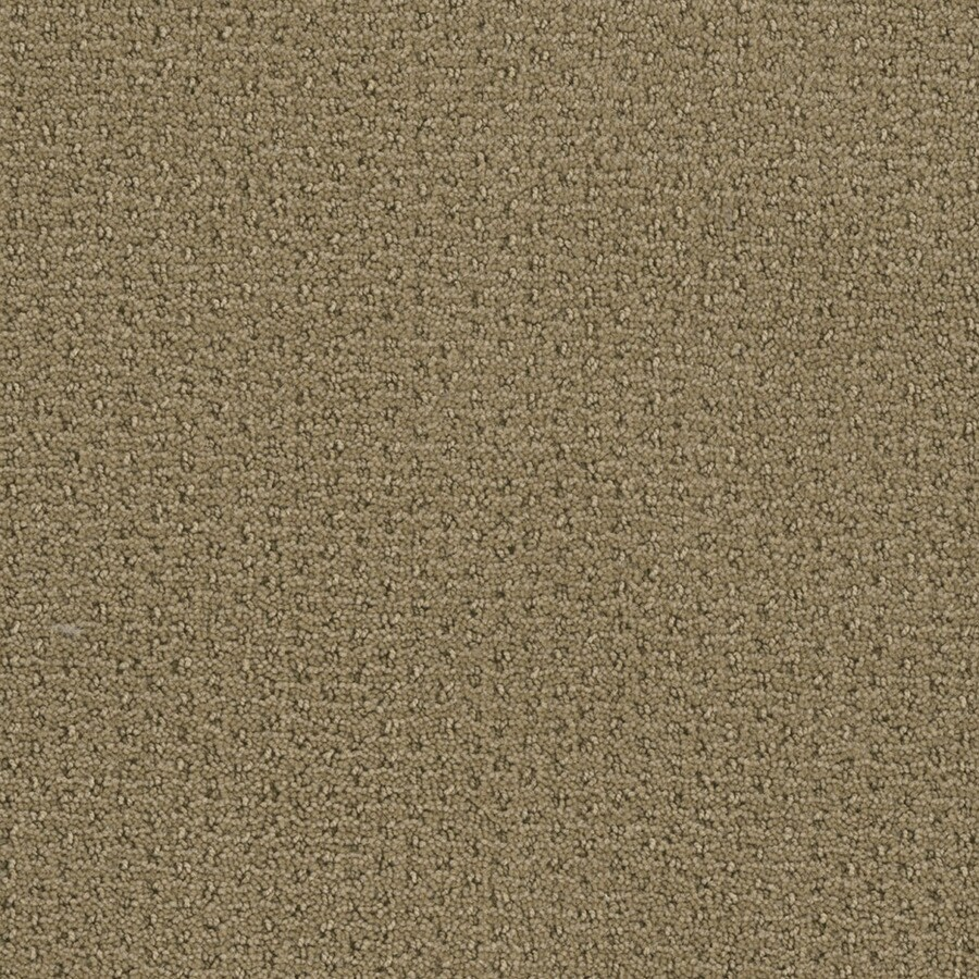 STAINMASTER Active Family St Thomas Marzipan Berber/Loop Interior Carpet