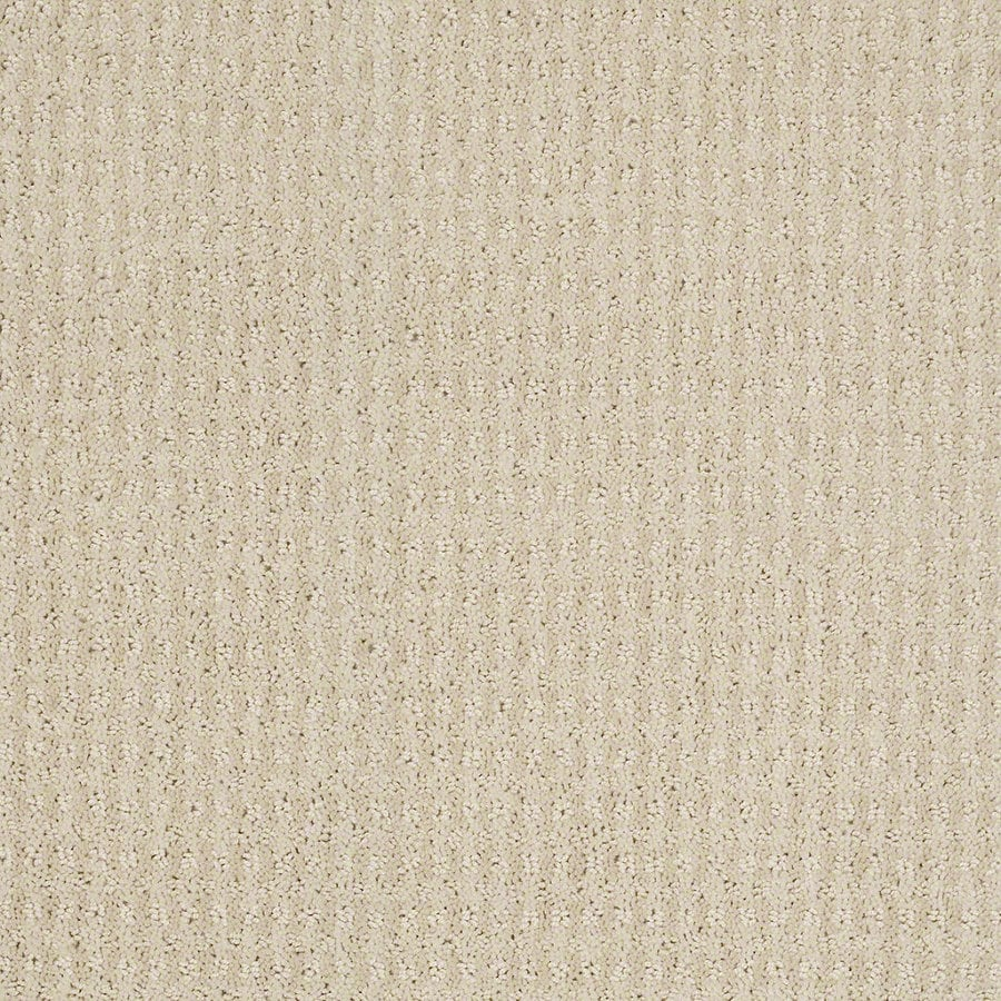 STAINMASTER Active Family St John 12-ft W x Cut-to-Length Macadamia Berber/Loop Interior Carpet