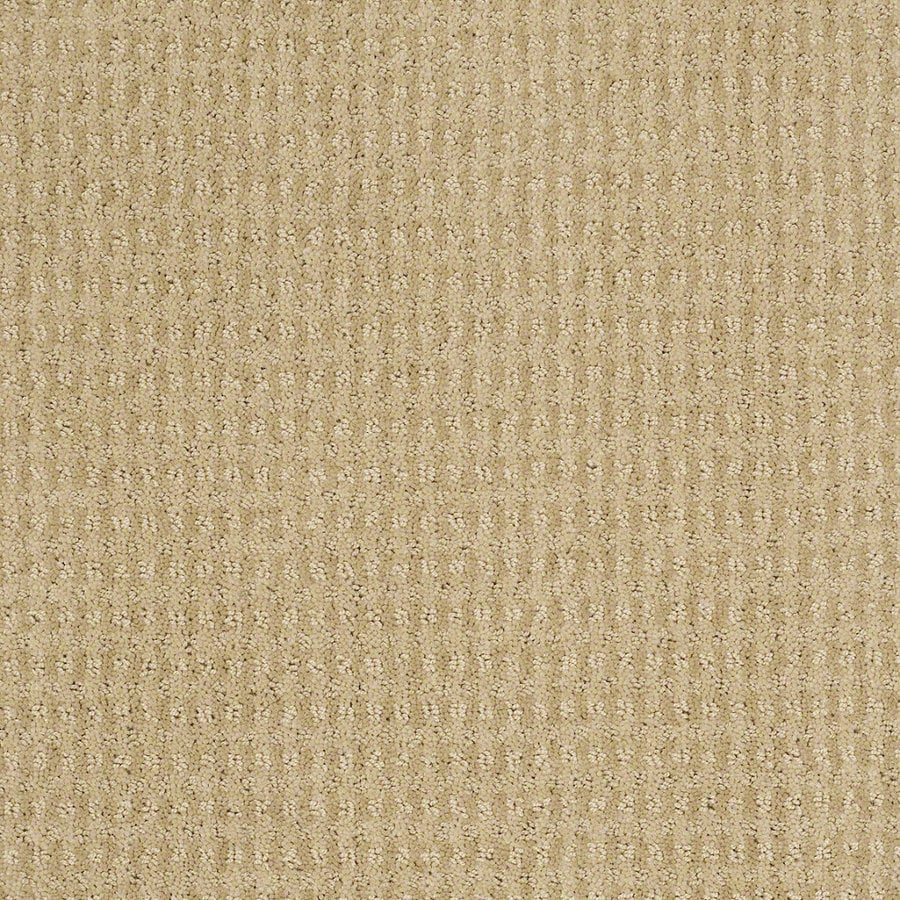 STAINMASTER Active Family St John 12-ft W x Cut-to-Length Chamomile Berber/Loop Interior Carpet