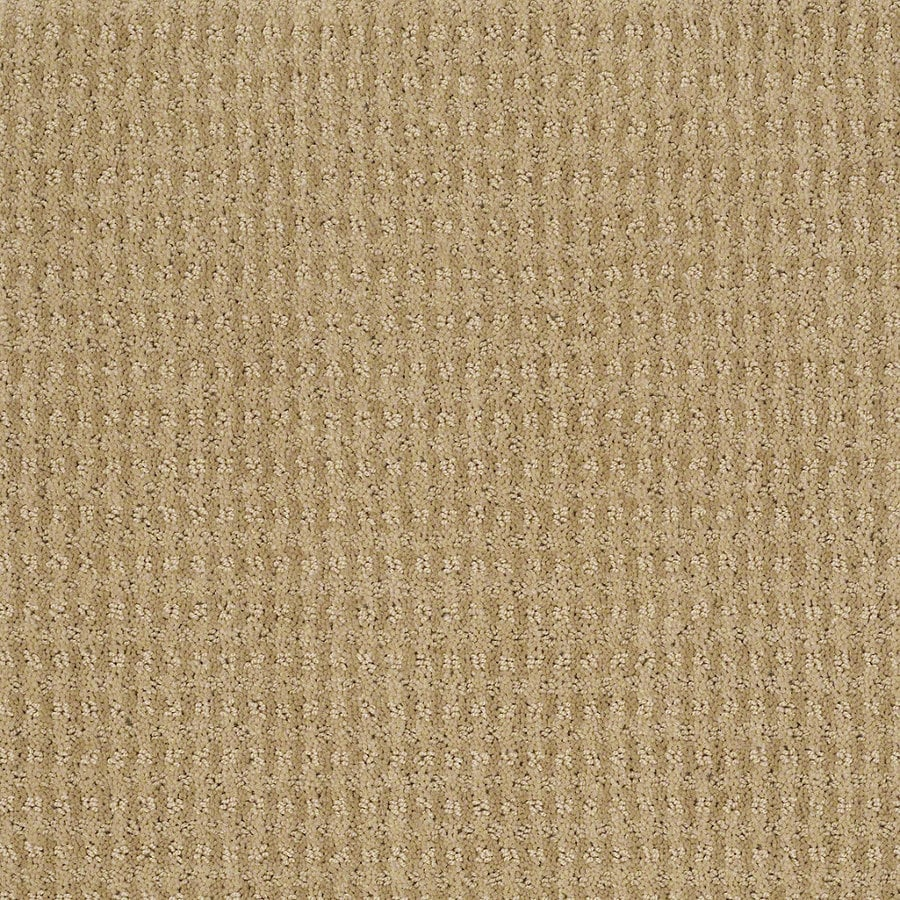 STAINMASTER Active Family St John Golden Fleece Berber/Loop Interior Carpet