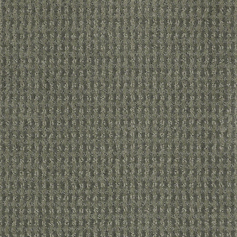 STAINMASTER Active Family St John Agave Green Berber Indoor Carpet