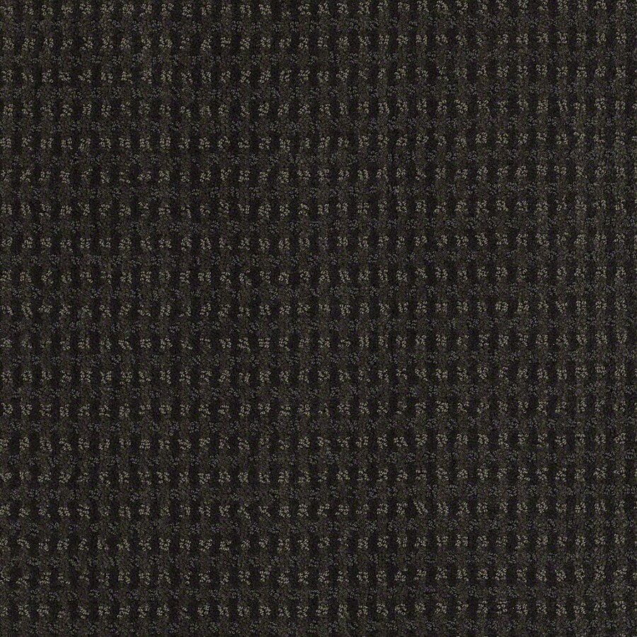 STAINMASTER Active Family St John Cilantro Berber/Loop Interior Carpet