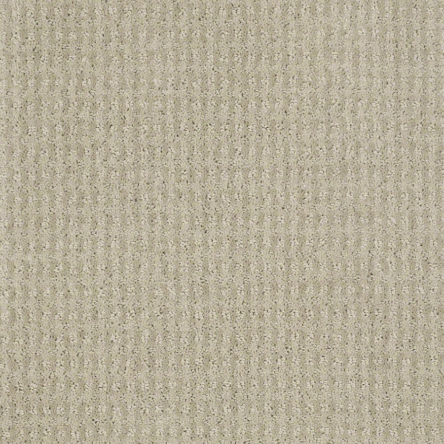 STAINMASTER Active Family St John 12-ft W Oyster Berber/Loop Interior Carpet