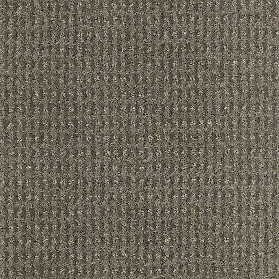 STAINMASTER Active Family St John Tradewinds Berber Indoor Carpet