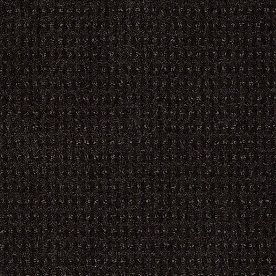 STAINMASTER Active Family St John Meteorite Berber/Loop Interior Carpet