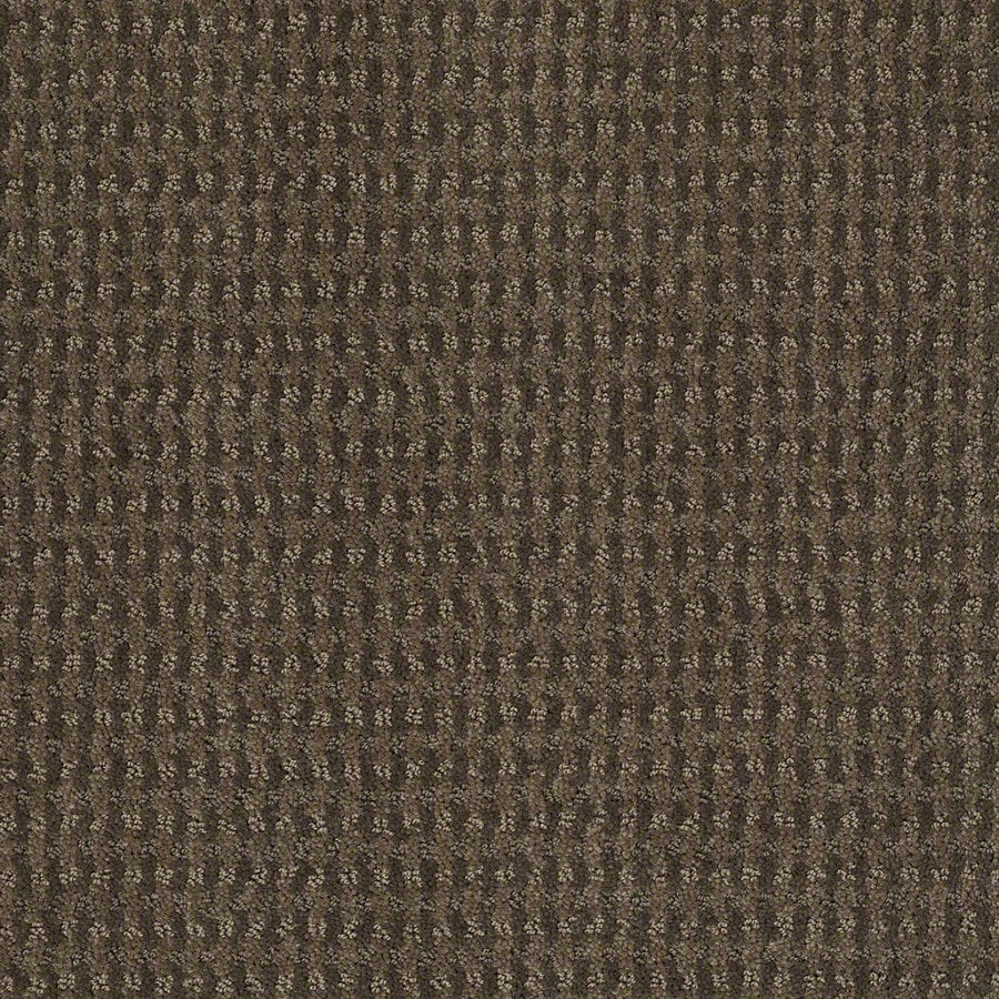 STAINMASTER Active Family St John 12-ft W x Cut-to-Length Oregon Trail Berber/Loop Interior Carpet