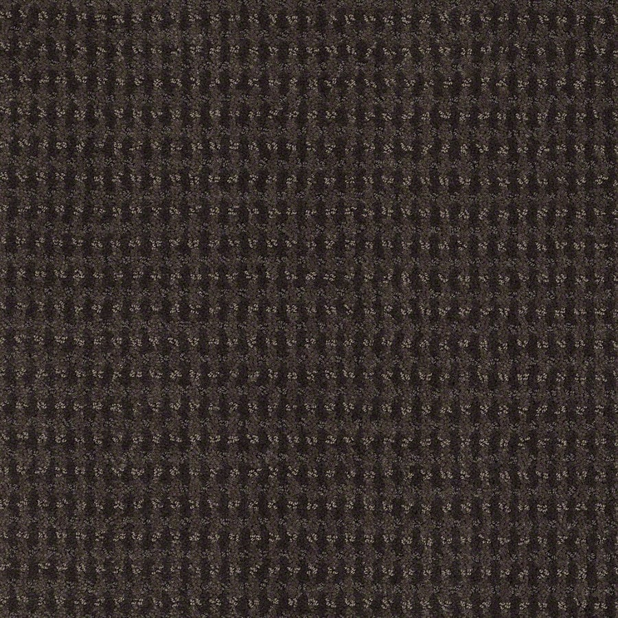 STAINMASTER Active Family St John 12-ft W Falcon Berber/Loop Interior Carpet