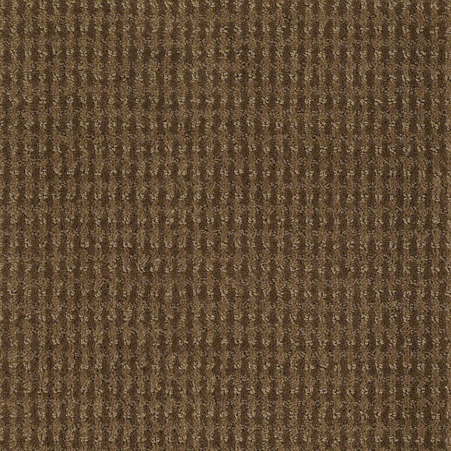 STAINMASTER Active Family St John Toasted Coconut Berber/Loop Interior Carpet