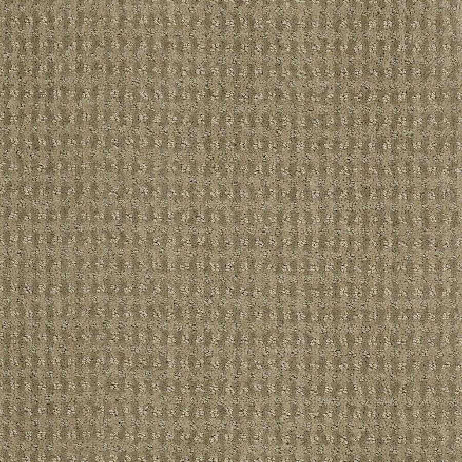 STAINMASTER Active Family St John 12-ft W x Cut-to-Length Fennel Berber/Loop Interior Carpet