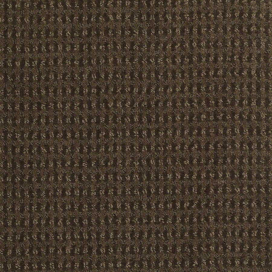 STAINMASTER Active Family St John Shitake Berber/Loop Interior Carpet