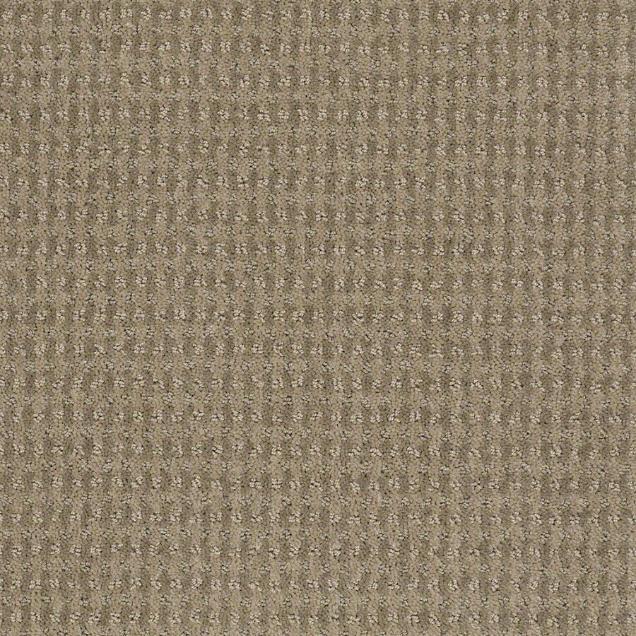 STAINMASTER Active Family St John Hazy Berber Indoor Carpet