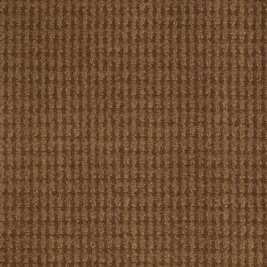 STAINMASTER Active Family St John 12-ft W x Cut-to-Length Roman Brick Berber/Loop Interior Carpet
