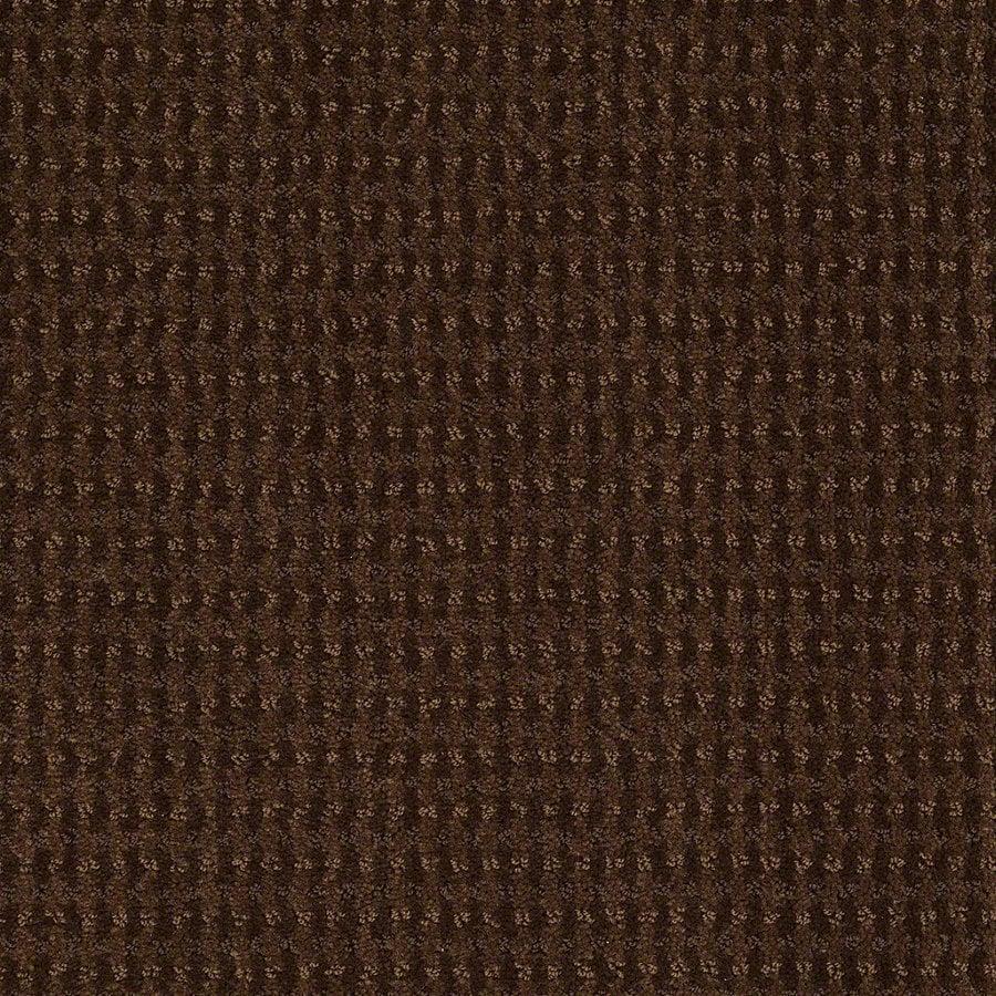 STAINMASTER Active Family St John Nutmeg Berber/Loop Interior Carpet