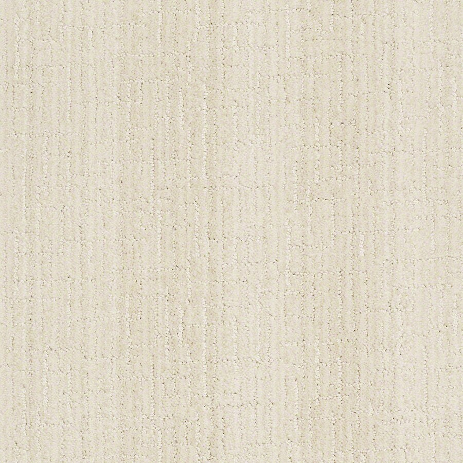STAINMASTER Active Family Unquestionable 12-ft W x Cut-to-Length Latte Froth Berber/Loop Interior Carpet