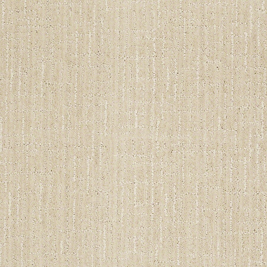 STAINMASTER Active Family Unquestionable 12-ft W x Cut-to-Length Cameo Berber/Loop Interior Carpet