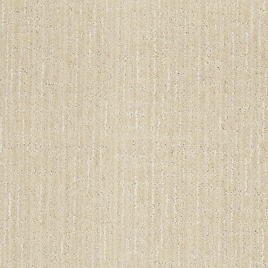 STAINMASTER Active Family Unquestionable Cameo Berber/Loop Interior Carpet